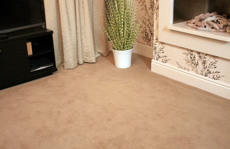 floor-carpet-living-room